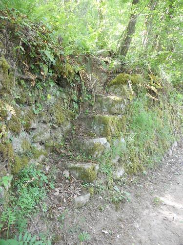 2018-05-12 - Rando à Maclas - Le Plateau de Bessey et le Batalon (16), Escalier de pierres