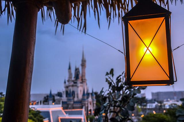 Treehouse light castle TDL