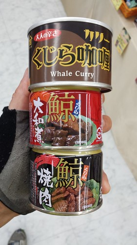Whale Curry Canned
