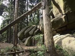 Harz May 2018
