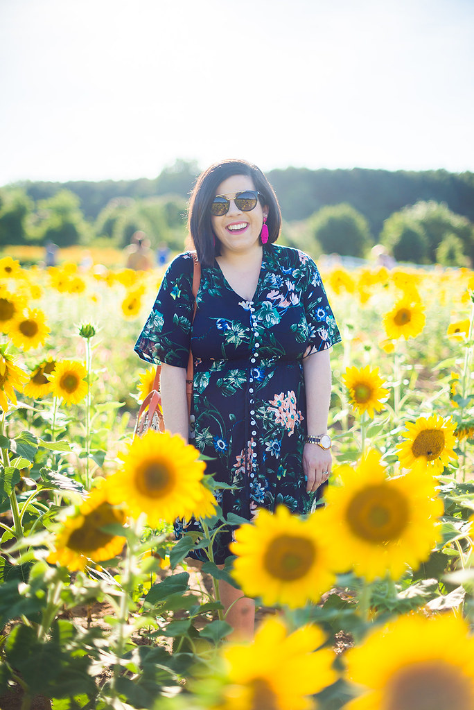 Sunflower Field-@headtotoechic-Head to Toe Chic