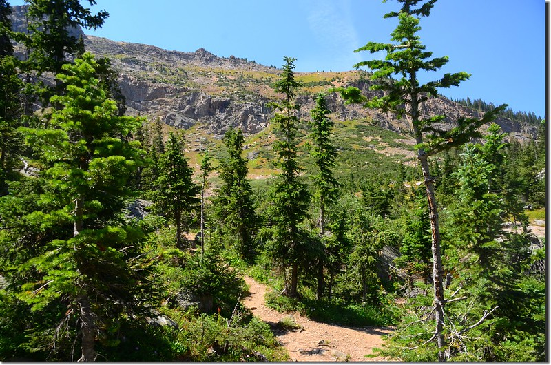 Columbine Lake Trail (10)
