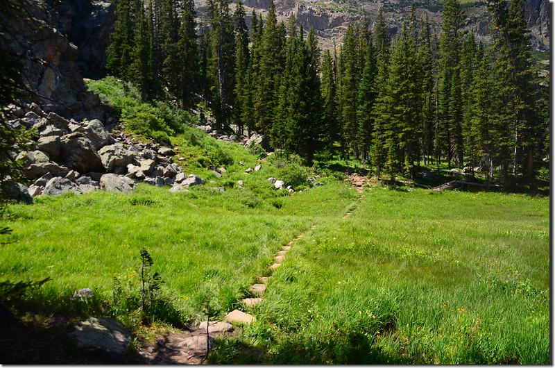 Columbine Lake Trail (7)