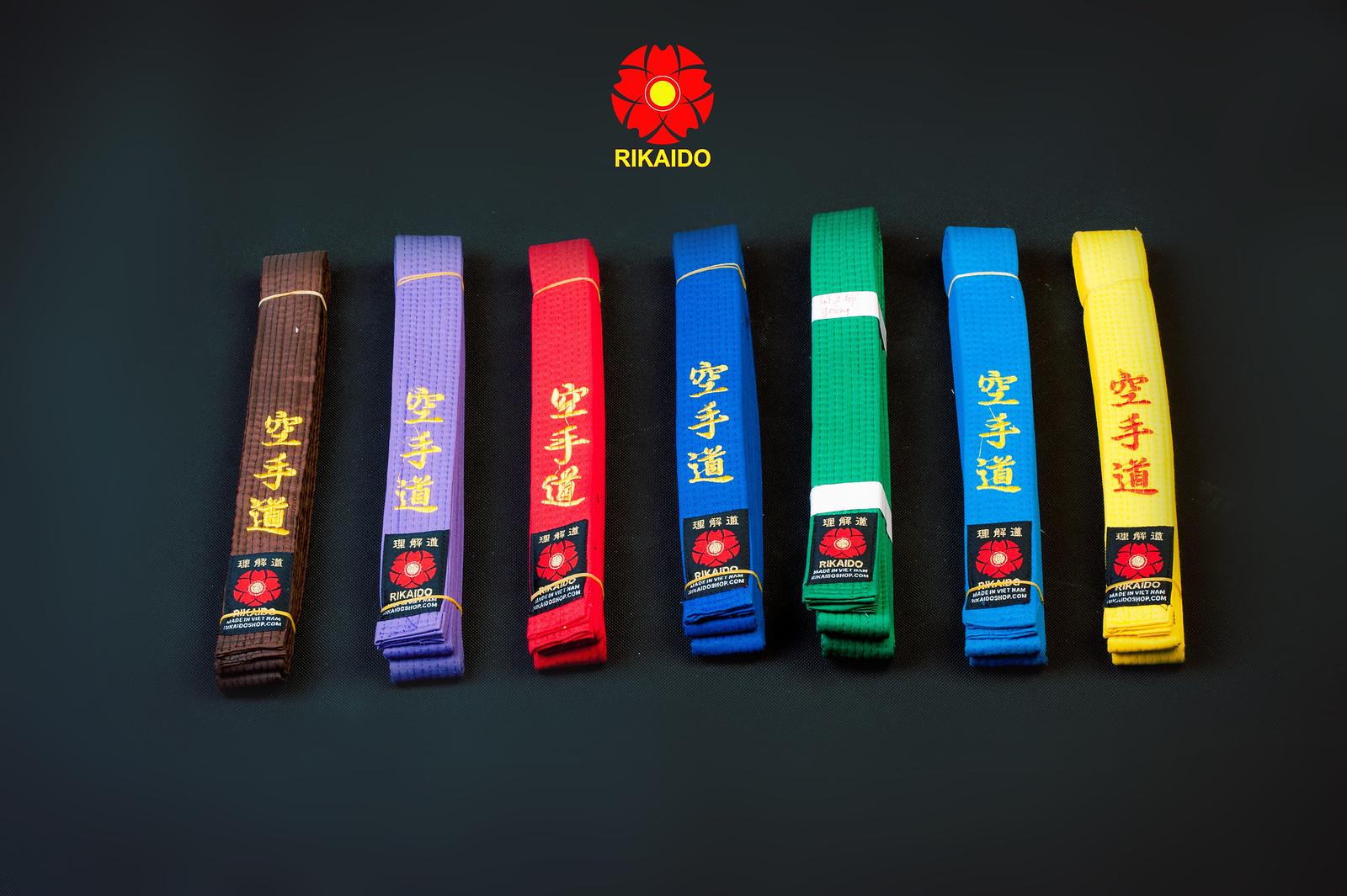 42291915950 ddd09eef2b h - Ảnh nghệ thuật karate chụp trong studio