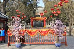 Peking 2010 - 6./7.Tag, Tempel der Azurblauen Wolken, Tempel des Schlafenden Buddha, Neujahrsfest/Heimreise