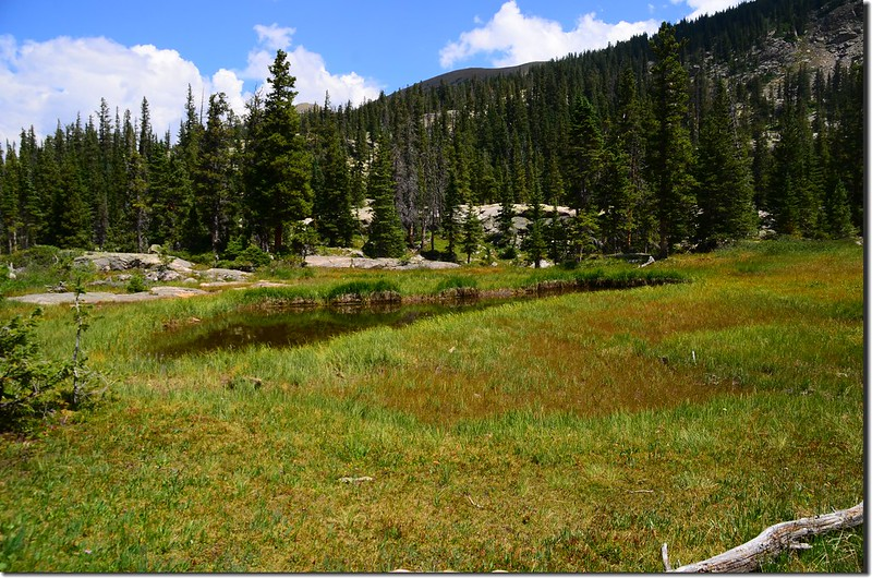 The pond at the meadow below Columbine Lake