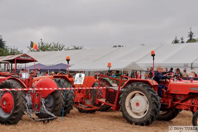 Concentration de vieux tracteurs