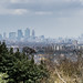 Canary Wharf from Warley Place