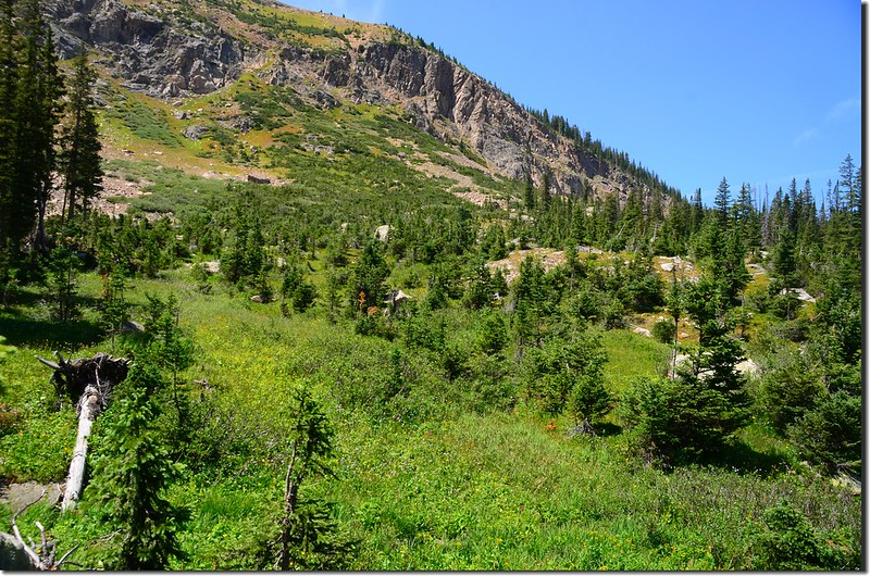 Columbine Lake Trail (12)