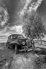 Austin A40 Somerset 4-Door Sedan 1952