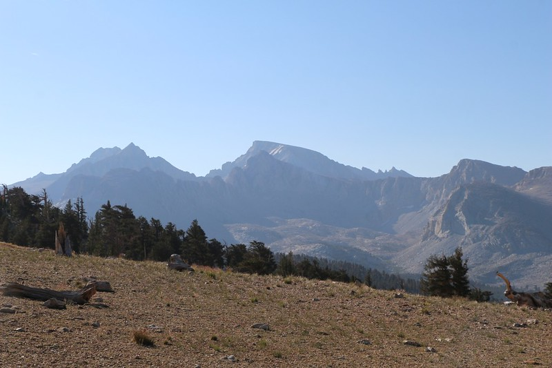 My first view of Mount Whitney (center) from the John Muir Trail