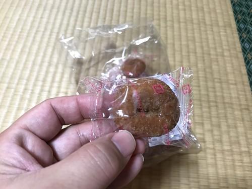 shinkouokashi026
