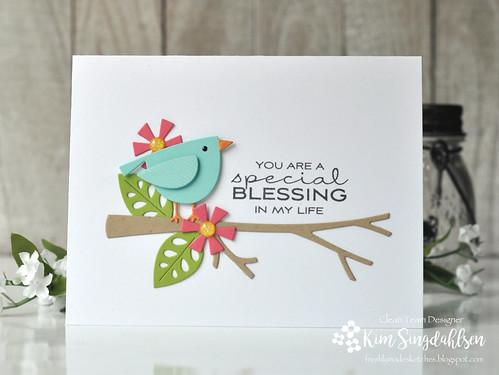 FMS Blessing