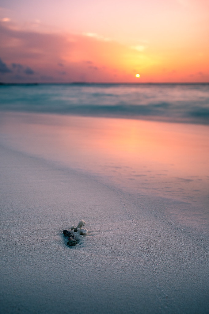 Sunset on the beach - Maldives - Travel photography