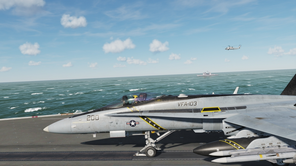 DCS World: F/A-18C Hornet  43869633791_f89d7d6557_o