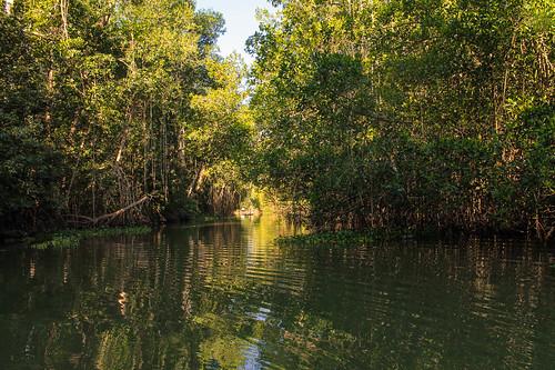 Río Arriba (60)