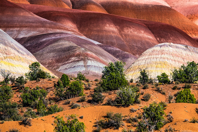 colored rocks along Paria River Valley Road