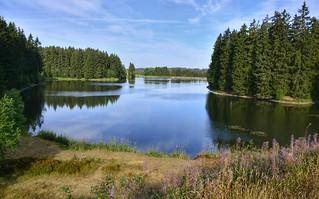 Ziegenberger Teich Buntenbock