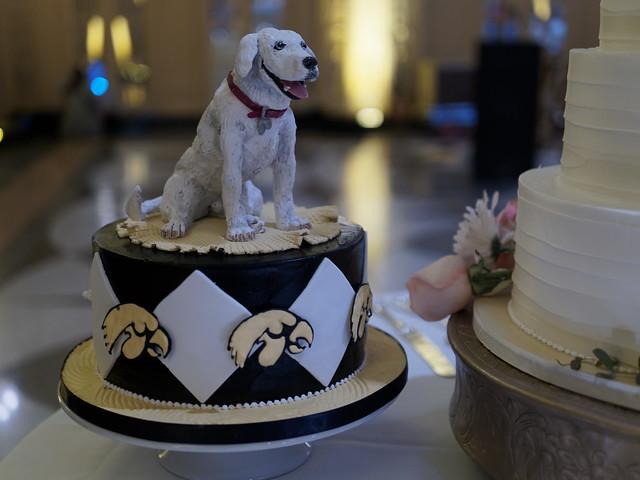 Doggo Groom's Cake