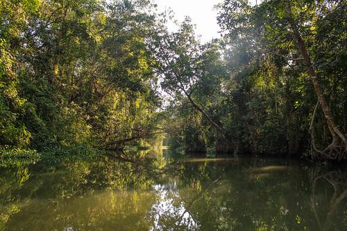 Río Arriba (69)