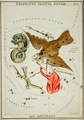 Sidney Hall's (1831) astronomical chart illustration of the Delphinus, Sagitta, Aquila, and the Antinous. Original from Library of Congress. Digitally enhanced by rawpixel.