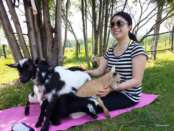 Haute Goat yoga
