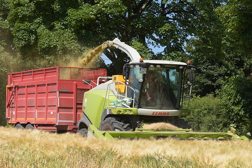 Claas Jaguar 870 Self Propelled Forage Harvester filling a Broughan Engineering Mega HiSpeed Trailer
