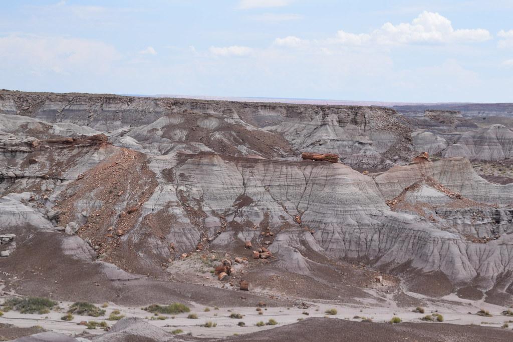Petrified Forest National Park-Blue Mesa