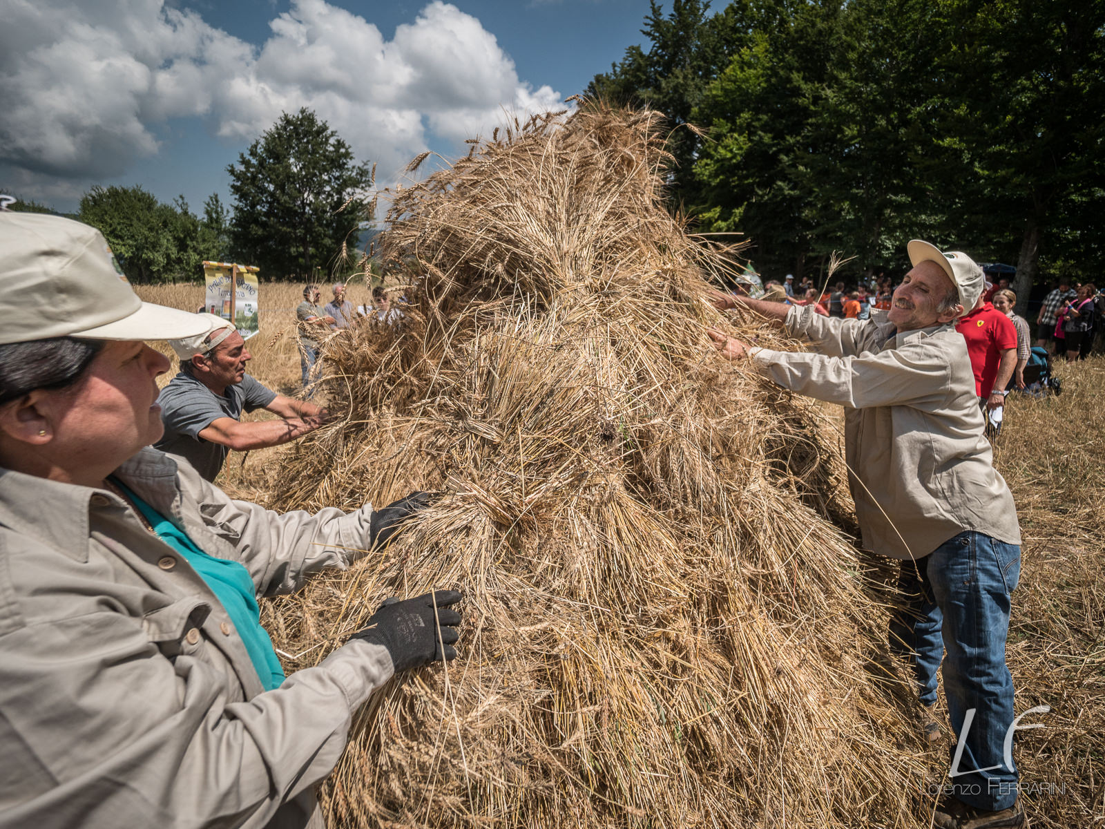 Harvest Competition in Terranova di Pollino