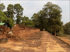 Angkor, Eastern Mebon Terrace 20180203_100352 DSCN2599