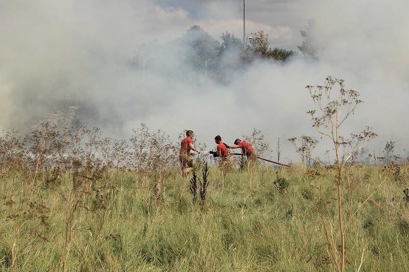Fighting the Sea Mills grass fire
