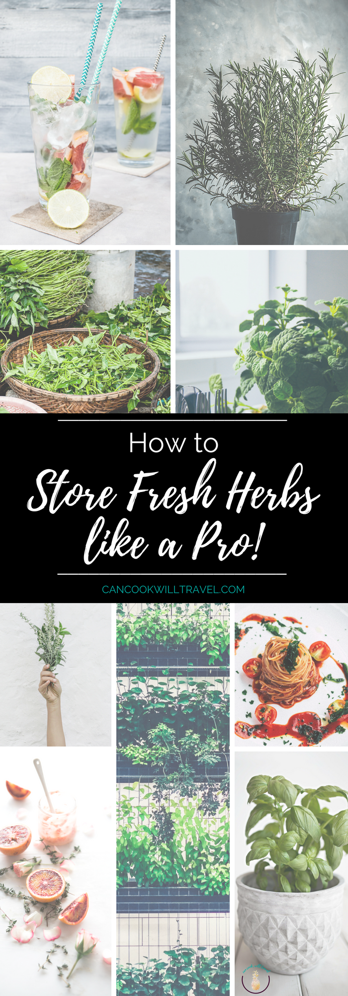 How to Store Fresh Herbs_Tall