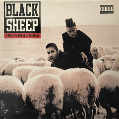 BLACK SHEEP:A WOLF IN SHEEP'S CLOTHING(JACKET A)