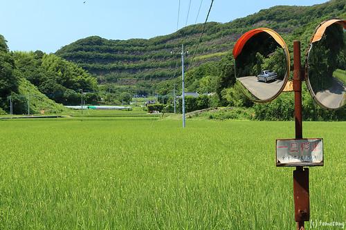 Mt. Shiratake