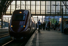 Thalys evening arrival