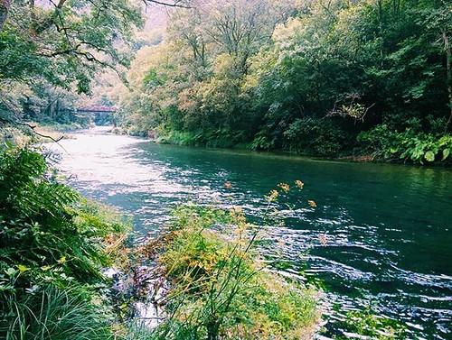Río Eume. #fragasdoeume #caaveiro #phonephoto #eume #fragas #rio #rioeume