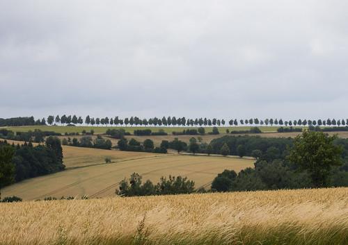 Landschaft bei Duderstadt (2)