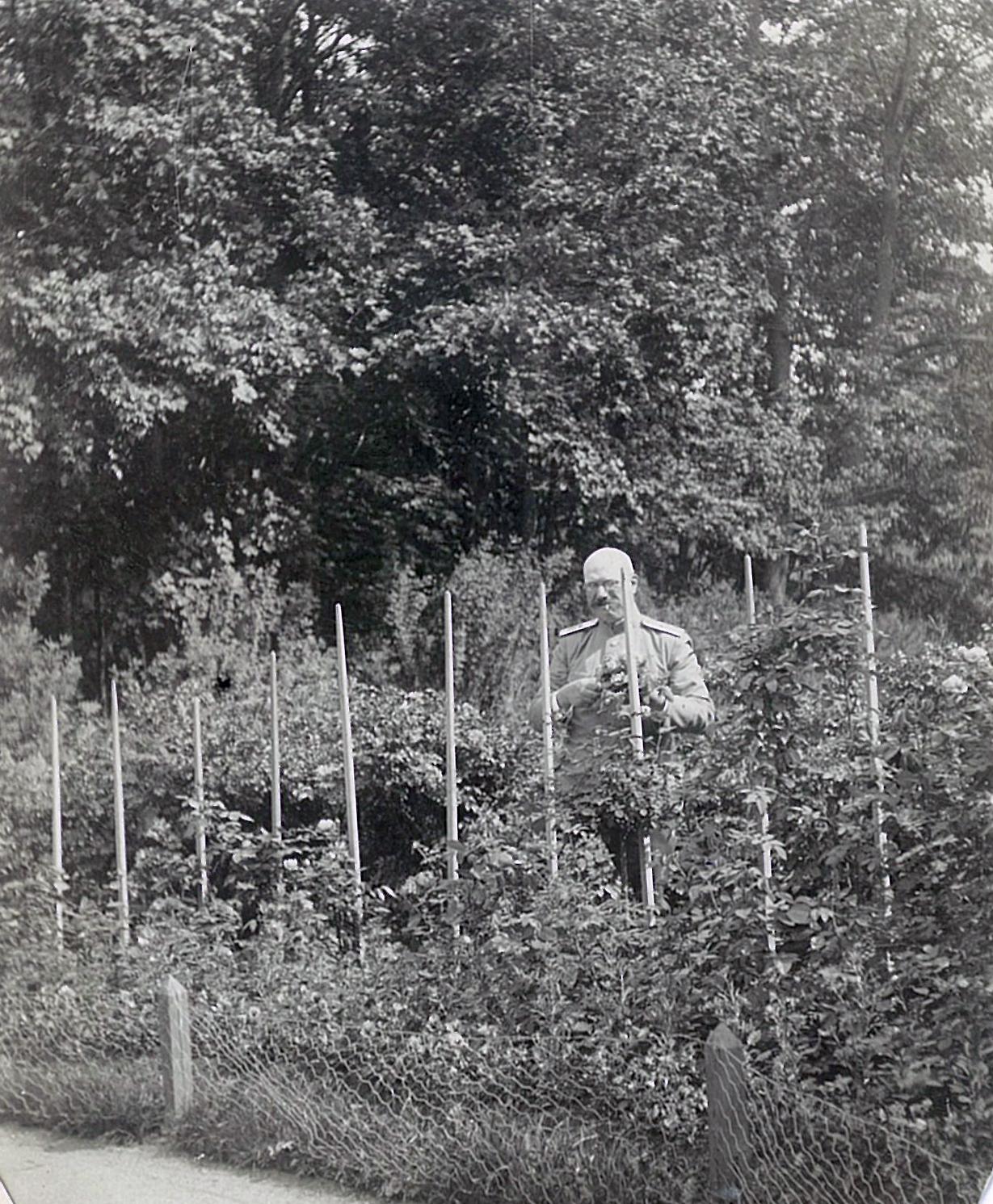 В.П.Всеволожский в розарии перед усадебным домом в Рябово