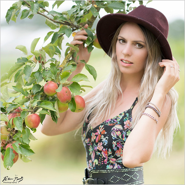 Arianne: Apple Tree