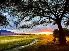 Sunrise in Zimbabwe along the Zambezi River.