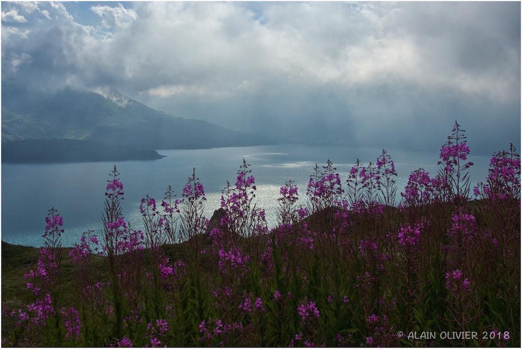 Lac du Mont-Cenis, Fort de Ronce et Lac Clair 44015247731_1ecdff71ff_o