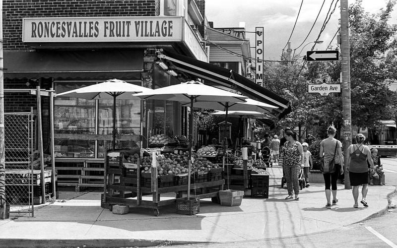 The Fruit Village