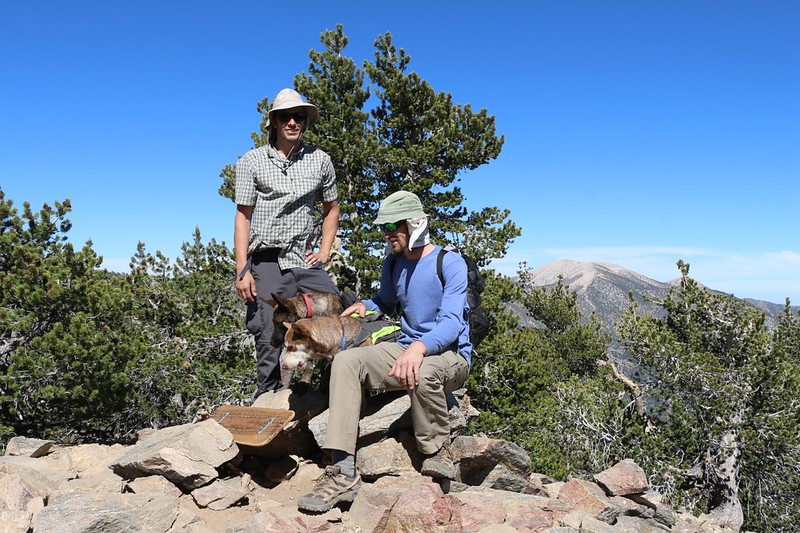 Men and Dogs pose on the summit of San Bernardino Peak, with San Gorgonio in the distance