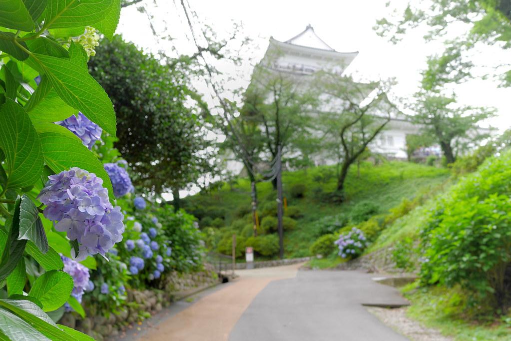 Odawara Castle 9