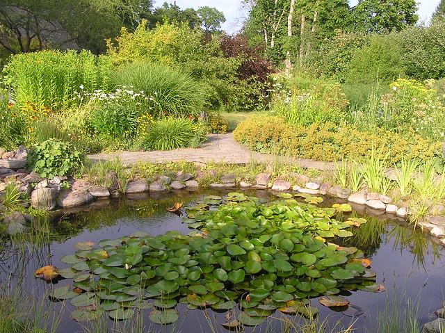 Suuremõisa Manor Garden, Hiiumaa