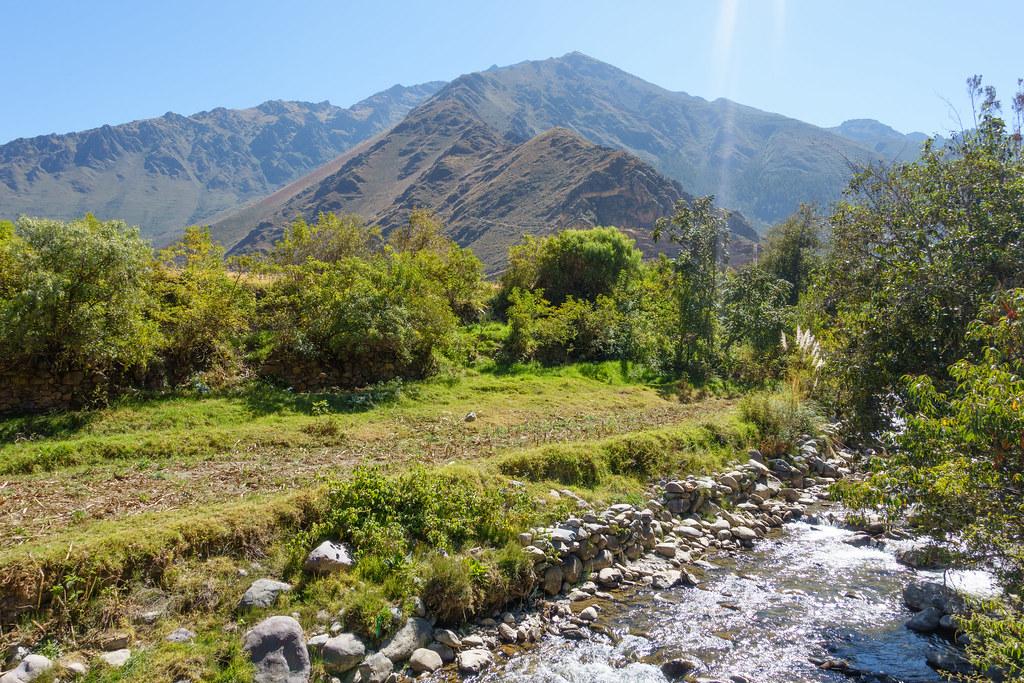 Machu Picchu-05696