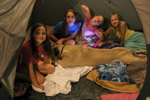 Camping Slumber Party