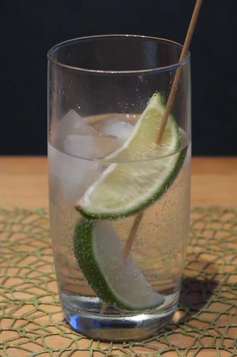 Dritter von mir zubereiteter Gin Tonic