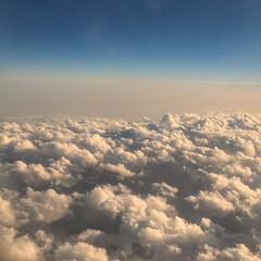 Landing (1)