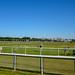 Chester racecourse, 2018 Jul 08 -- photo 5